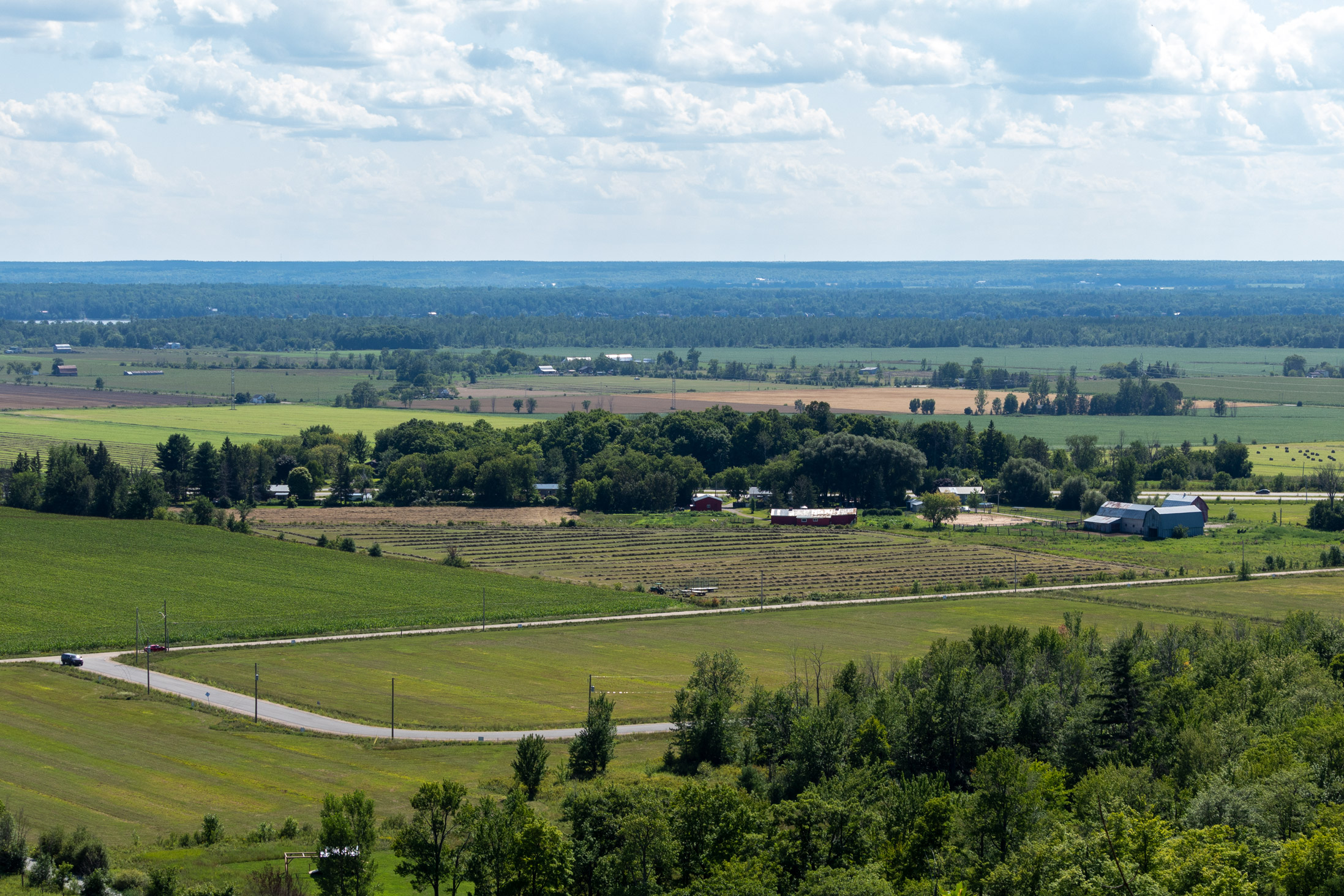 Landscape shot of farmland interspersed with small forests