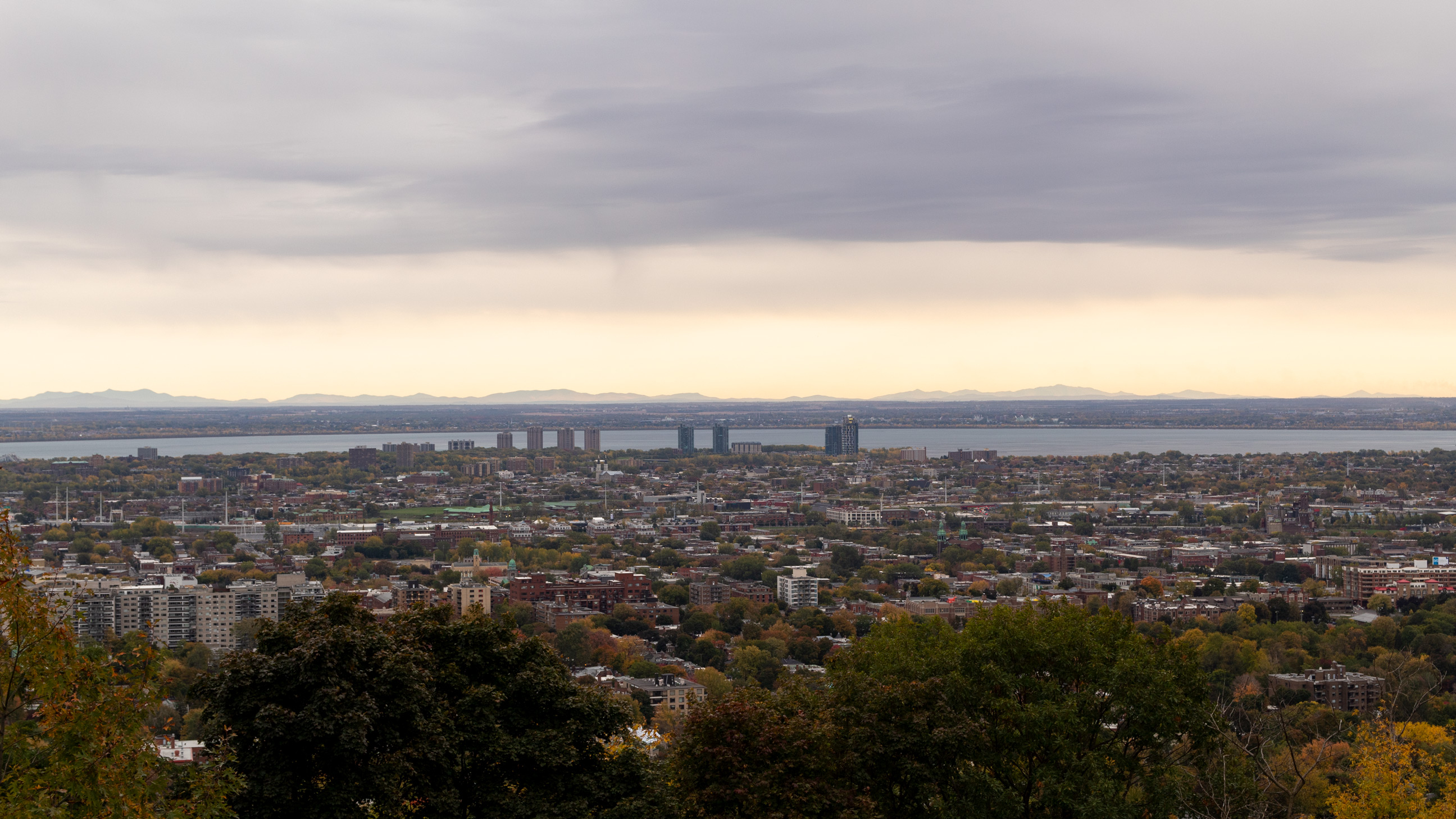 Wide shot of Montreal viewed from Summit Woods on Mont Royal