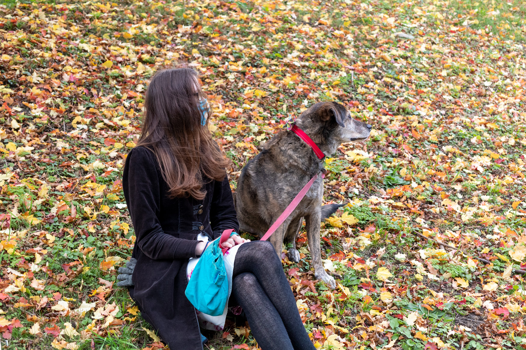 Woman sitting on the leaf-covered ground with dog sitting on the ground beside her