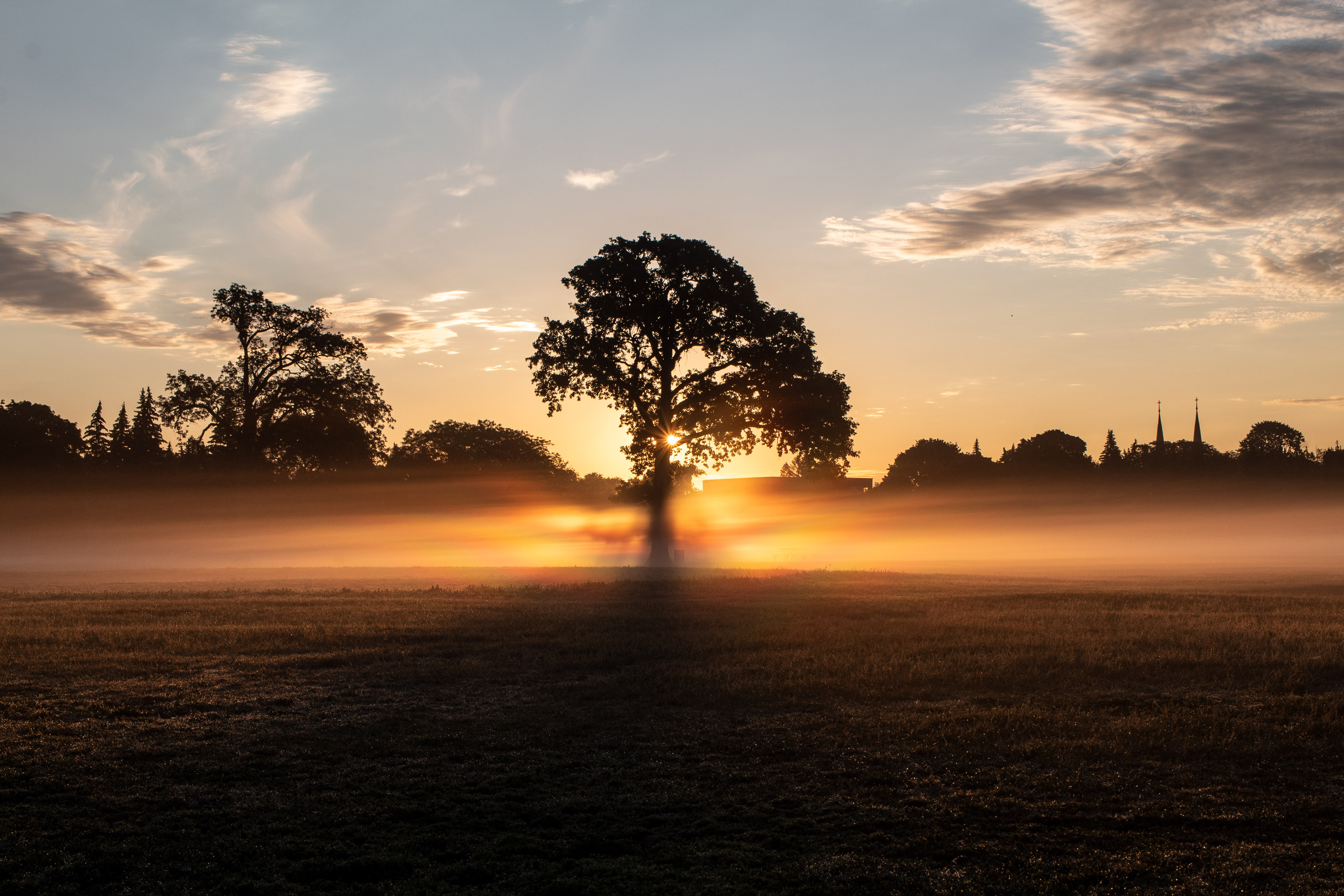 Tree on a field surrounded by fog. The sun is rising behind the tree, turning the fog various hues of orange, yellow, and red