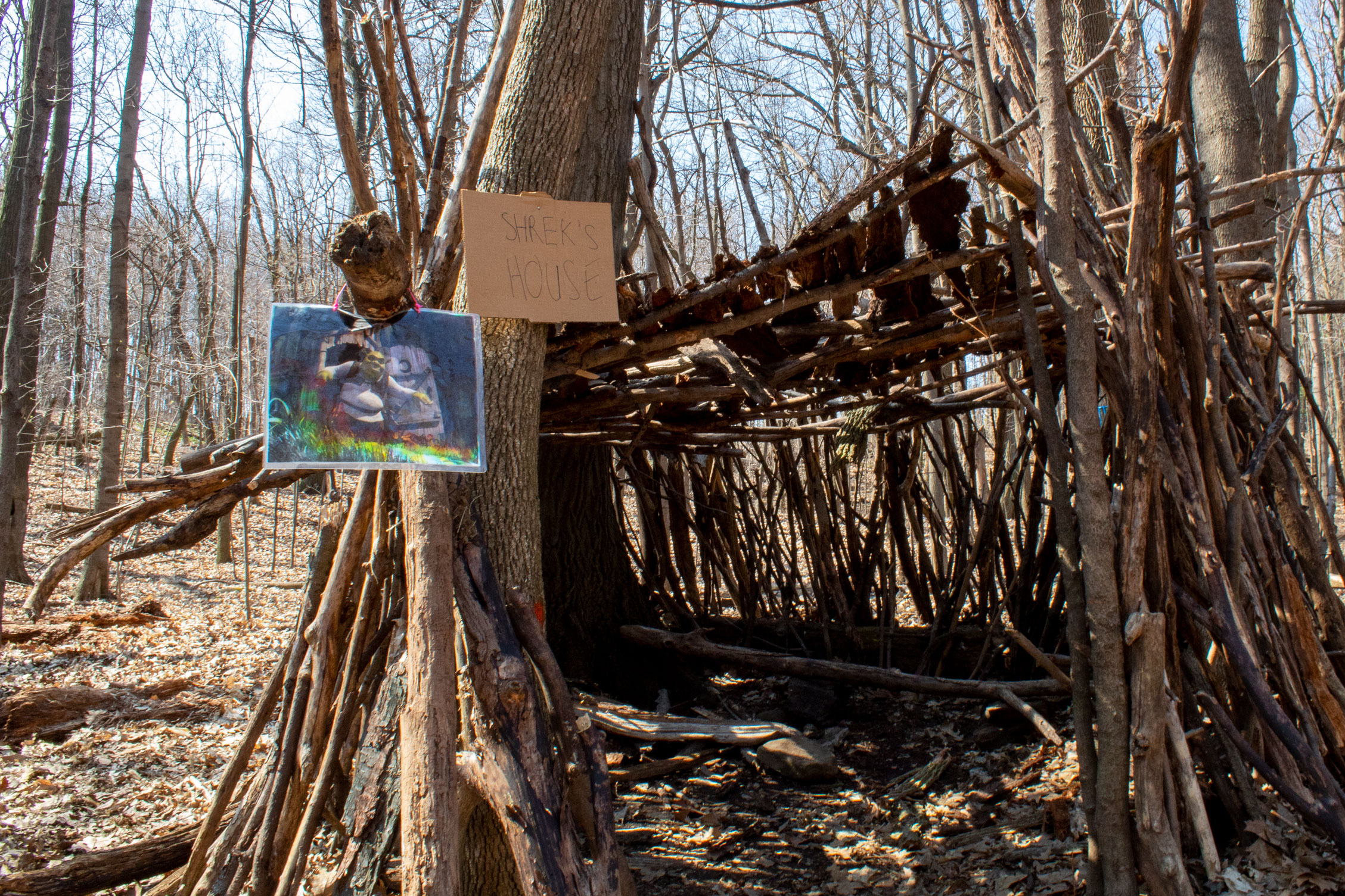 "Hut in the woods constructed out of sticks with a sign designating it ""Shrek's House"" and a photograph of Shrek emerging from an outhouse"